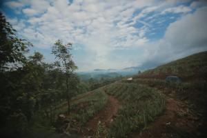 monsoon in kerala
